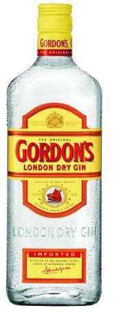Gordon's Dry Gin fles 1 l